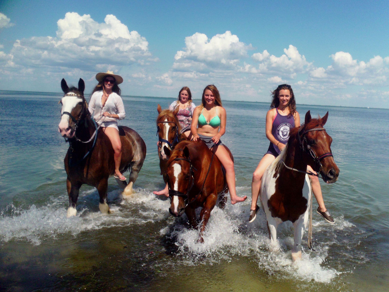 Horseback Riding On Beach St Petersburg