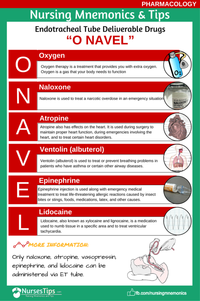 Endotracheal Tube Deliverable Drugs O Navel Nursing