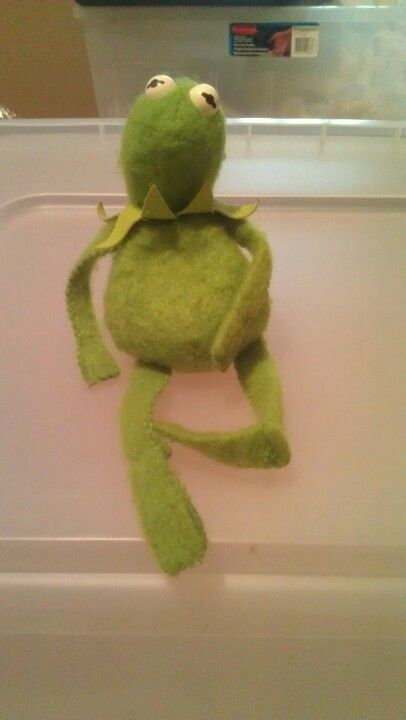 Original kermit the frog beanie baby from Fisher Price please leave ... 4c7a184ae83
