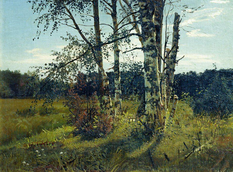 Картинки по запросу birch