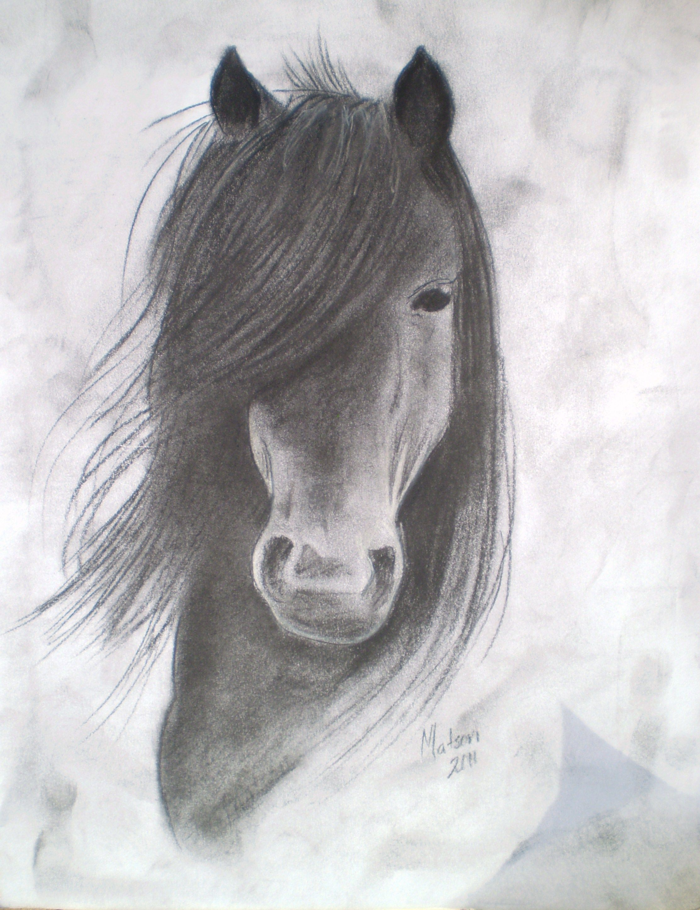 The finished piece! | Horse drawings, Horse head drawing ...  |Horse Art Drawings