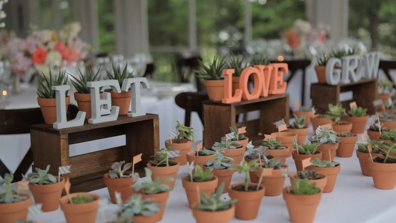 let grow wedding favors potted plants wedding