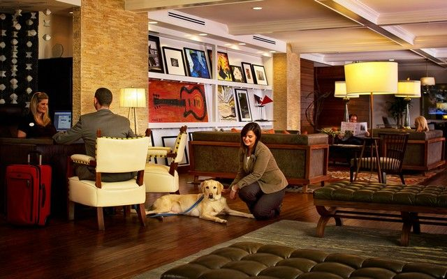 Pet Friendly Hotels Nashville Tennessee