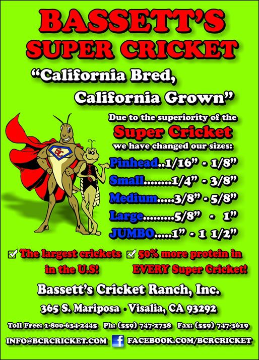 Bassetts Cricket Ranch Inc Bassetts Cricket Ranch