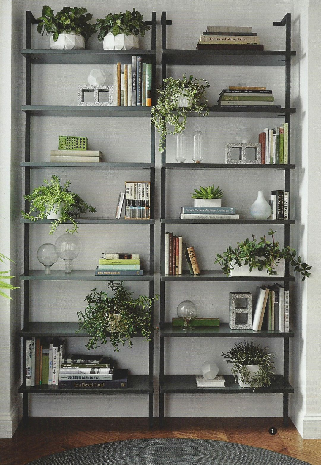 Industrial bookcases with plants Magazine Dump