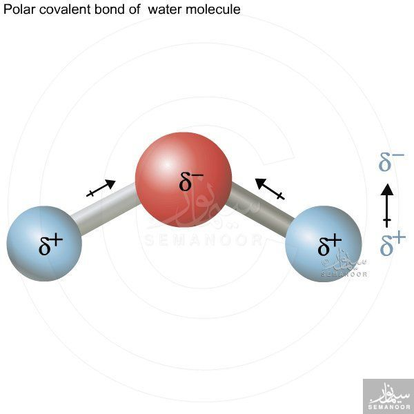Water Is A Good Solvent For Ionic Compounds Because Water Molecules Are Small And Polar There Is A Slight Nega Chemistry Education Organic Chemistry Chemistry