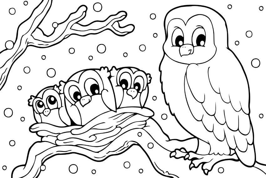Winter Animal Coloring Pages Owl Coloring Pages Bird Coloring Pages Valentine Coloring Pages