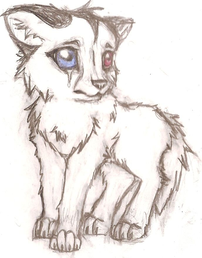 Crying wolf baby by jamiedogers on deviantart coloring for Pictures of awesome drawings