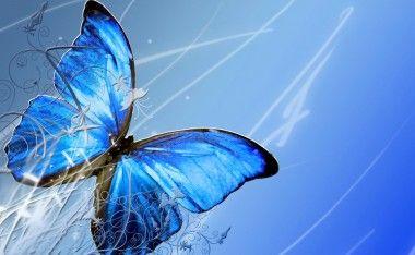 Descargar Fondos De Pantalla Gratis Para Celular Butterfly Art Butterfly Pictures Cross Paintings