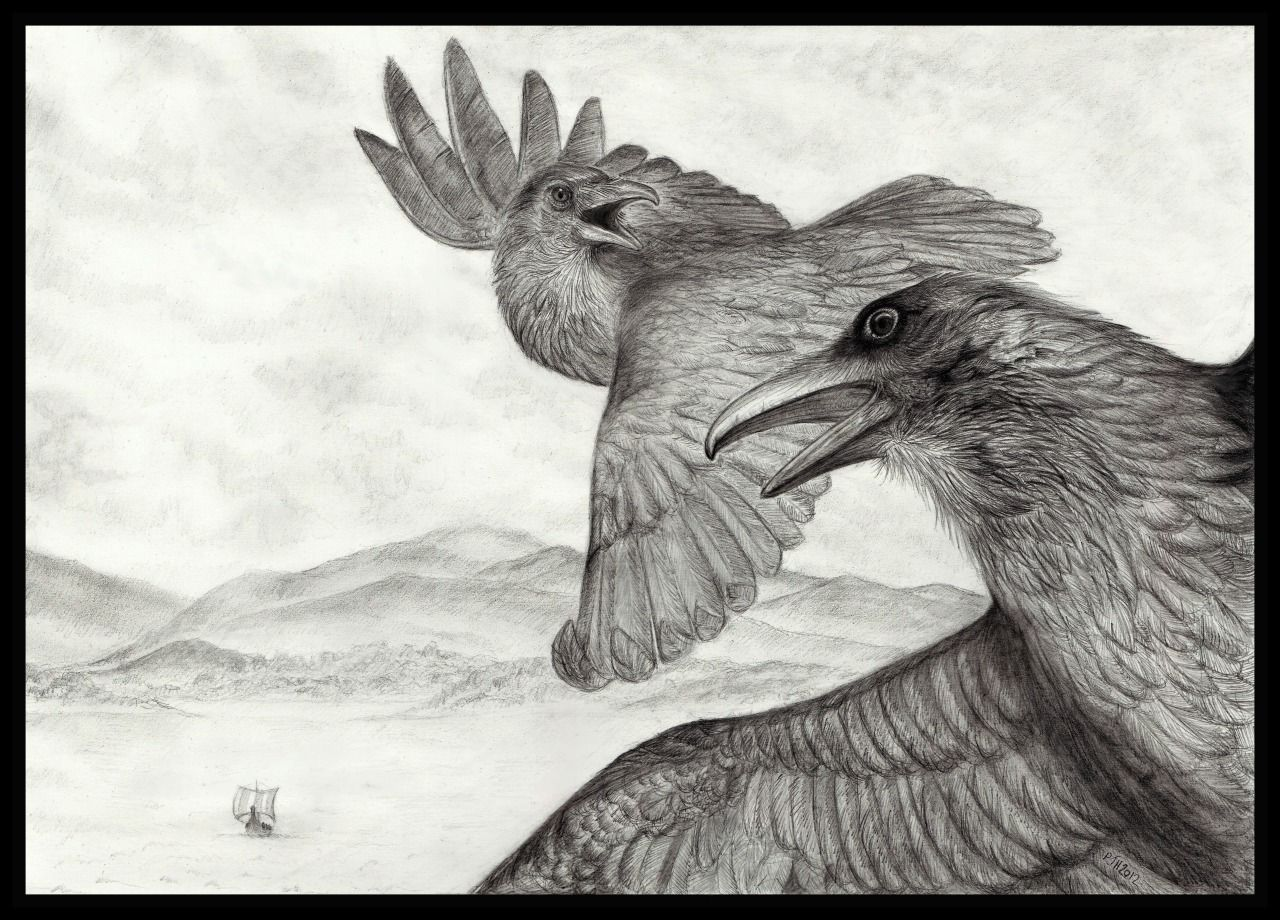 philip-harvey:  Hugin and Munin on their travels for Odin. Graphite pencil.