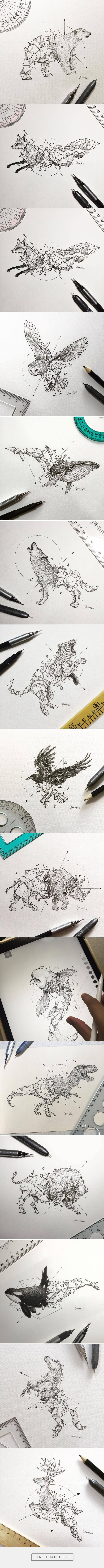 Lovely Half-Geometrical Drawings of Wild Animals – Fubiz Media... - a grouped images picture - Pin Them All