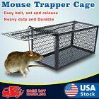 Live Humane Cage Mouse Trap Rat Hamster Catch Control New Hunting Bait Surv Z8H3 Garten & Terrasse #mousetrap