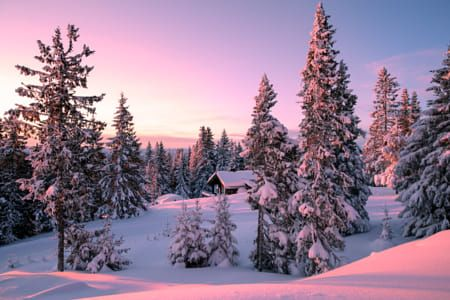 peaceful wintermood