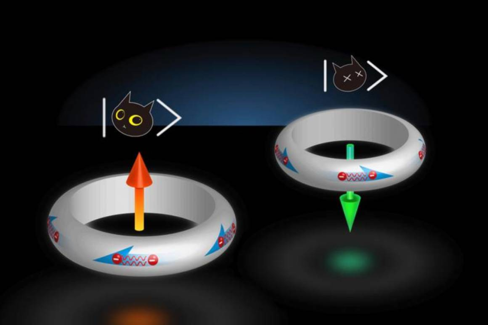 Schrodinger S Superconductor Naturally Stable In Two States At Once Quantum Computer Quantum Mechanics Physics Department