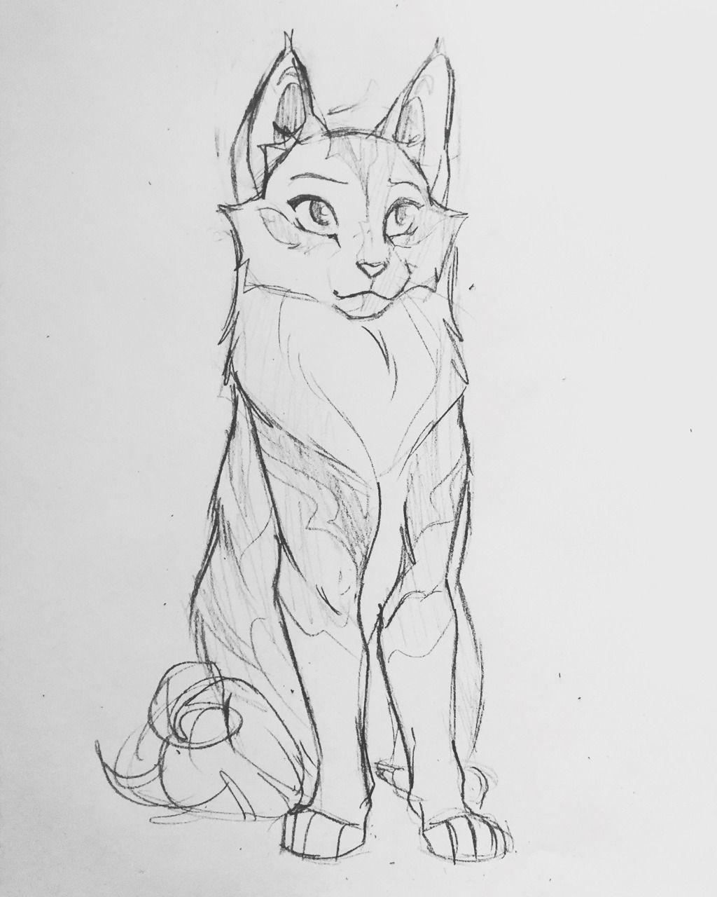 Anleitung Zeichnen Tiere