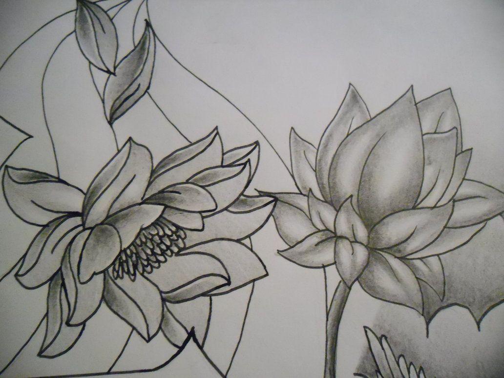 Looking for a good lotus flower tattoo randomness pinterest looking for a good lotus flower tattoo izmirmasajfo