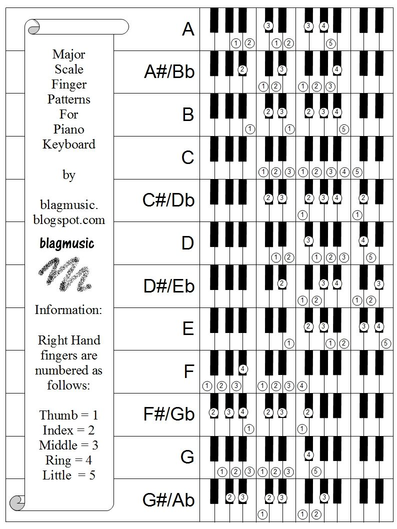 Allmajorscalespianofingerpatternsbyblagmusic01g 794 here is a sheet that shows the right hand finger patterns for playing the major scale in every key on the pianokeyboard double click the hexwebz Choice Image