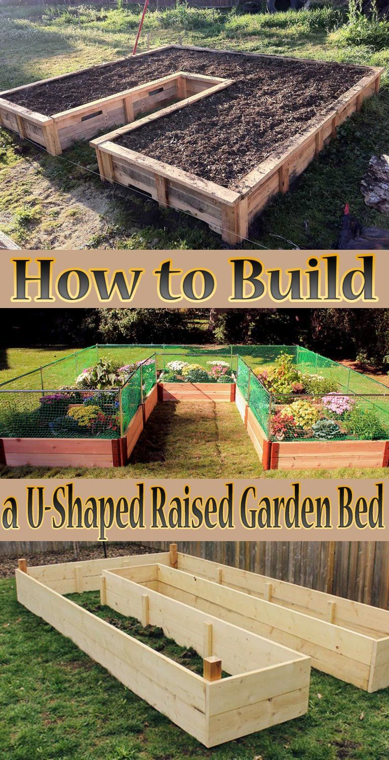 How to build a ushaped raised garden bed someday kevin will make