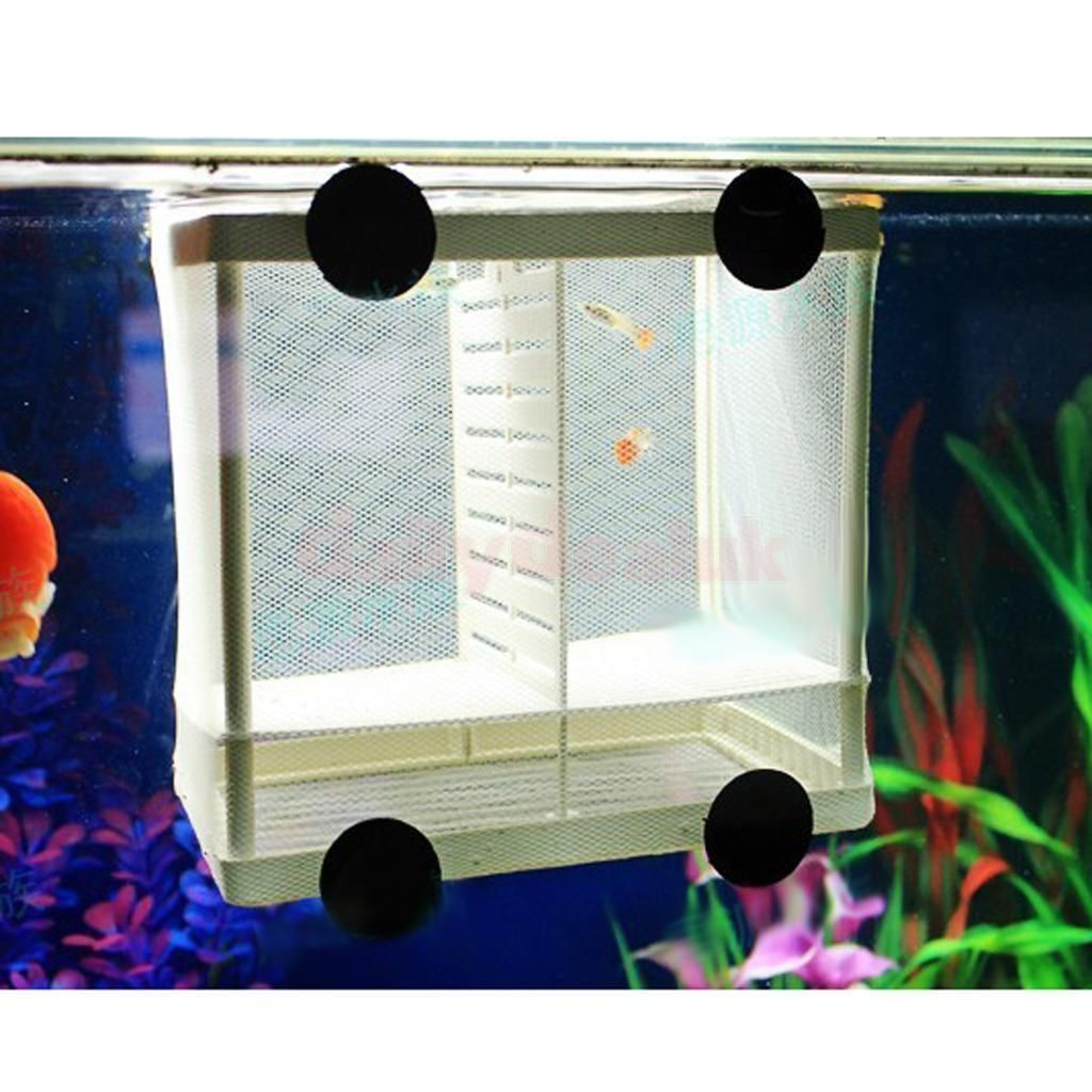 4.44 GBP - Aquarium Fish Tank Breeding Breeder Baby/Fry/Newborn Net ...