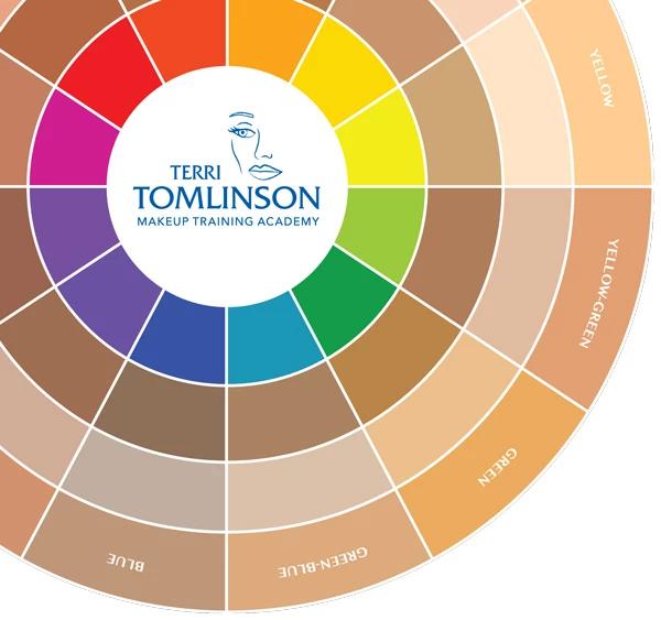 Terri Tomlinson Flesh Tone Color Wheel in 2020 Eye