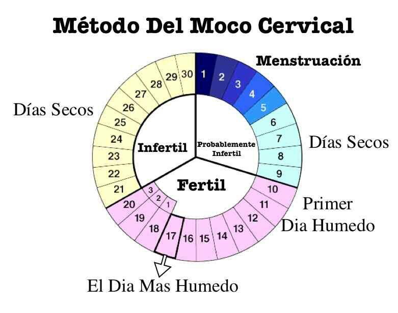 probabilidad de embarazo el dia de ovulacion