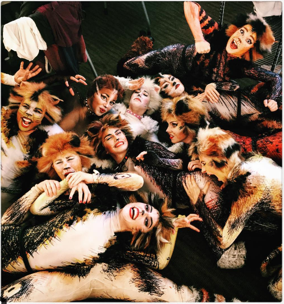 Cats the Musical , Broadway Revival, female cast funny photo