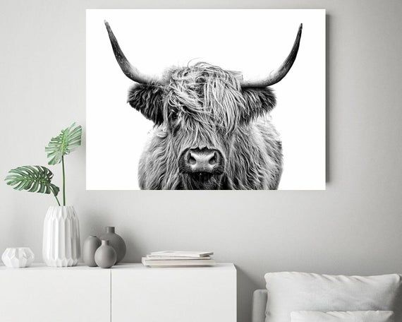 Photo of Highland Cow Print, Buffalo Print, Bull Print, Cattle Print, Black and White Animal Photography, Cow