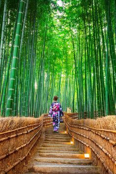 Photo of 15 Truly Astounding Places To Visit In Japan