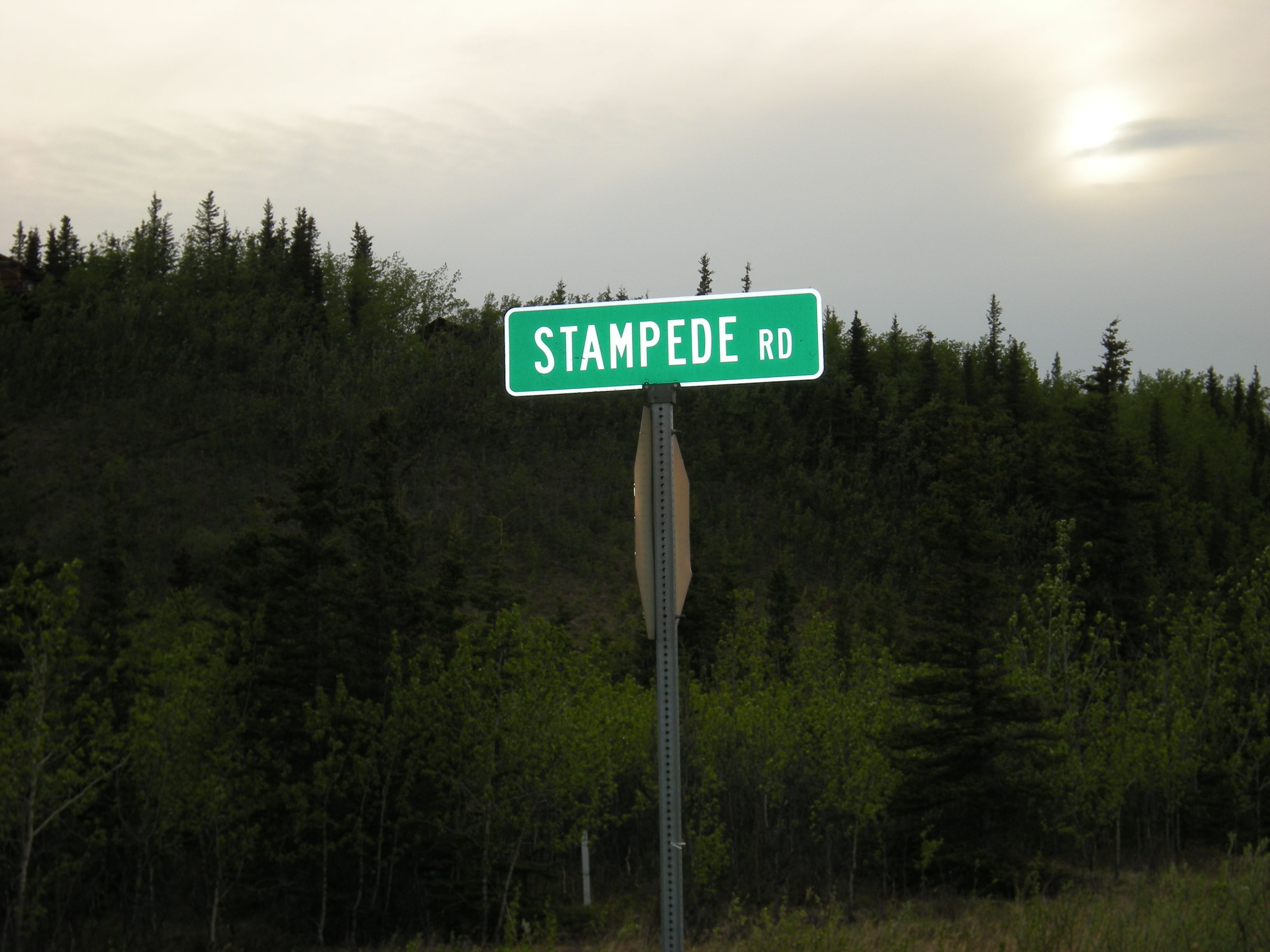 Stampede Rd. ~  Denali, Alaska ~ 'INTO THE WILD'