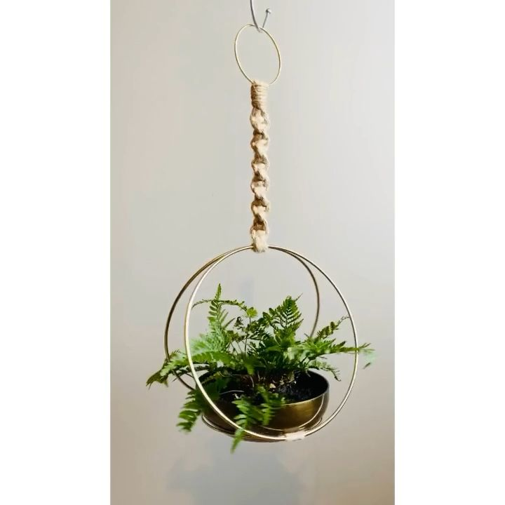 Brass Ring White Black Jute Cord Hanging Macramé Plants Rustic Bohemian Plant is part of Diy macrame plant hanger, Diy plant hanger, Plant hanger, Macrame plant hanger tutorial, Macrame plant hanger patterns, Macrame plant - rxjvqnm5w3q2vg Please convo me with any questions   Copyright 2020 Moonshadow Macramé  All Rights Reserved