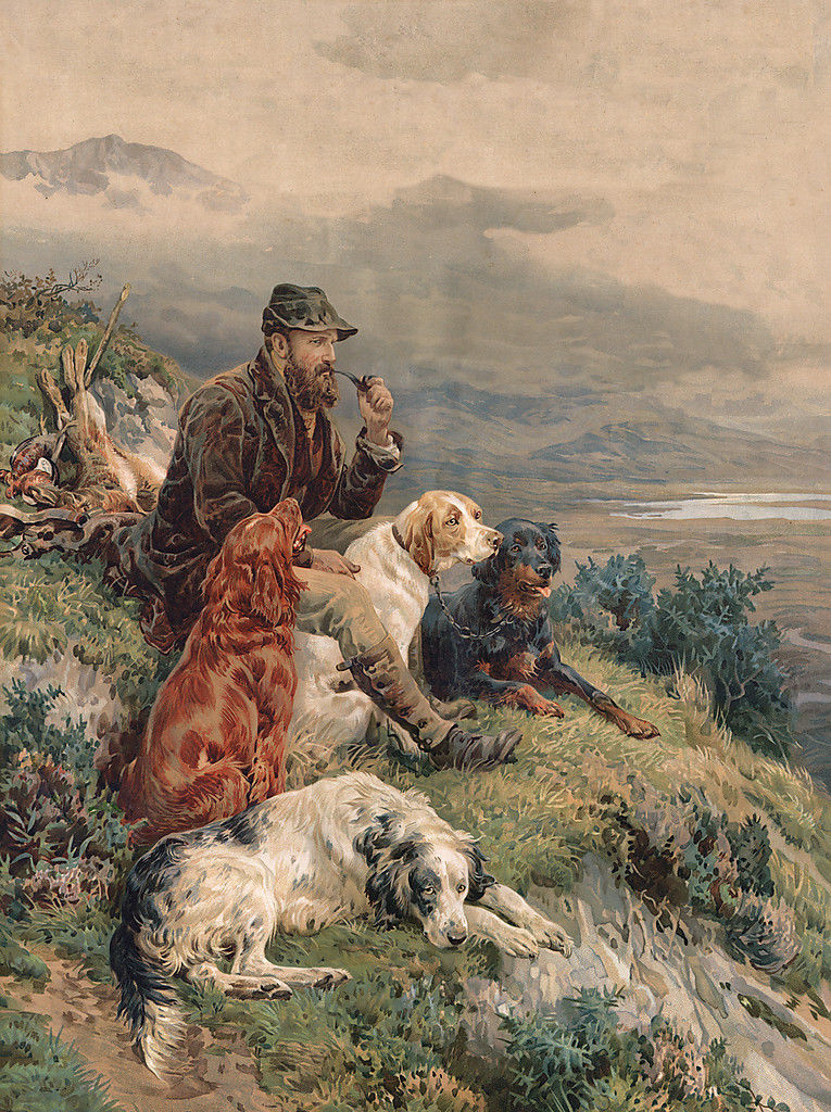 IRISH RED AND WHITE SETTER /& GORDON SETTER DOG GREETINGS NOTE CARD DOGS BY WATER