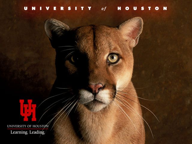 shasta cougars personals The university of houston's proud heritage of academic excellence dates back to its founding in 1927 in 1947, the institution launched one of its many rich traditions by adopting the cougar, later named shasta, as its official mascot over the years, we grew and prospered, becoming the university.
