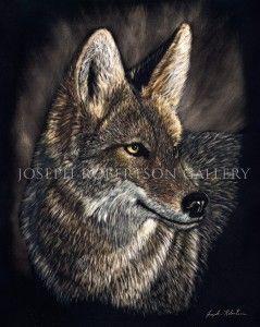 EARS-All-Ears-(Cyote)