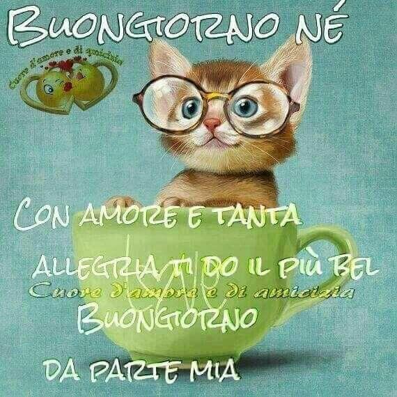 Pin di mayra p de de gracia su buongiorno amore for Immagini buona giornata divertenti