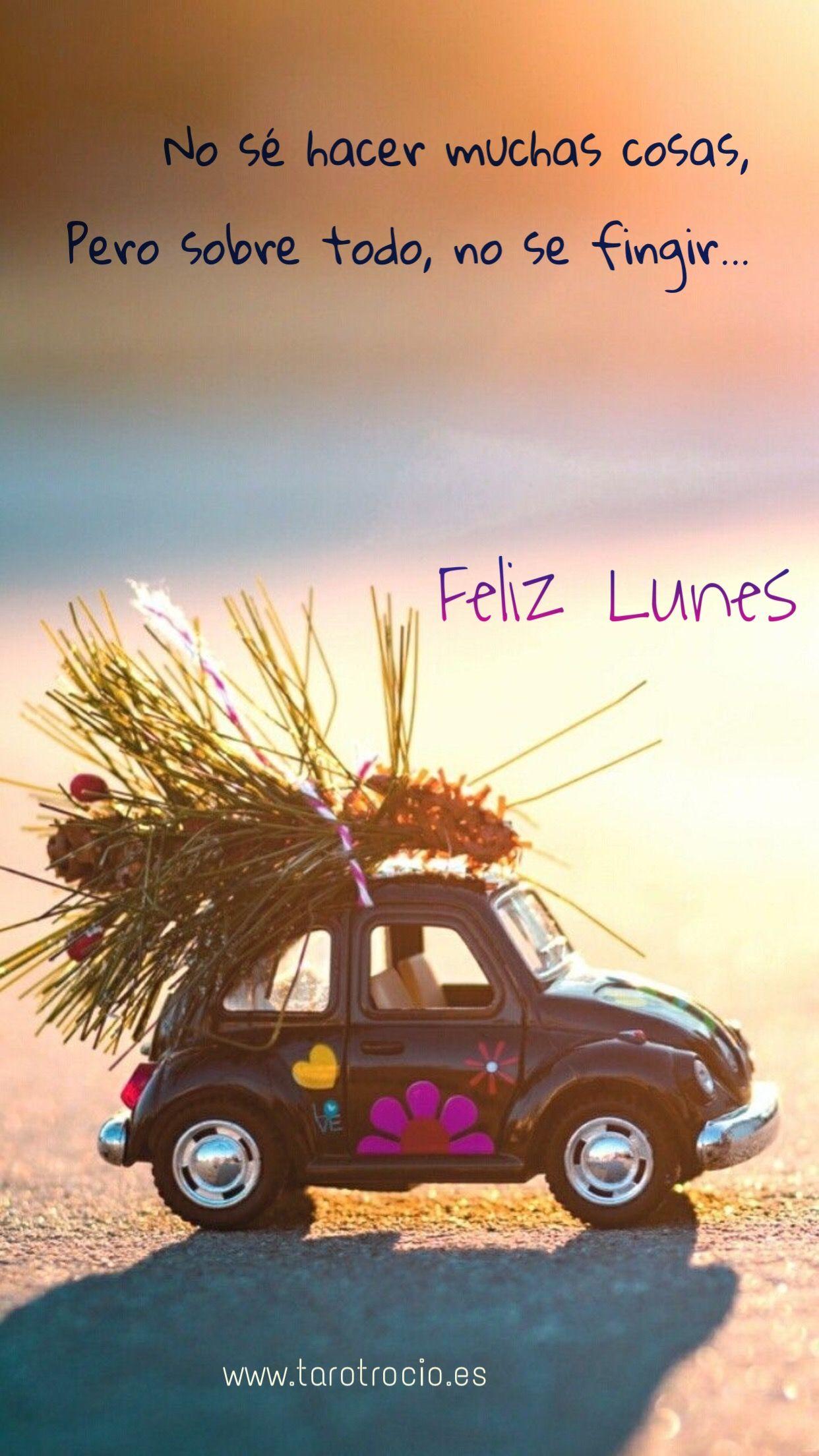 Feliz Lunes Saludos De Buenos Dias Frases De Lunes