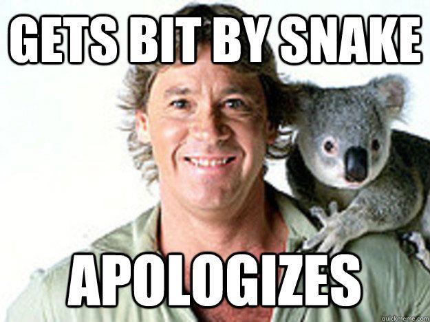 Good Guy Steve Irwin Steve Irwin Irwin Family Crocodile Hunter