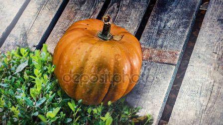 Yellow pumpkin, placed on a wooden bridge