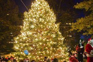 Hendersonville Christmas Tree Lighting Event Free Family Fun Christmas Tree Lighting Holiday Lights Holiday
