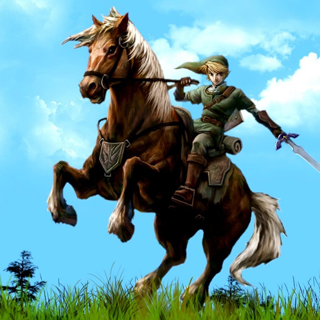 The Legend Of Zelda Legend Of Zelda Zelda Twilight Princess Hyrule Warriors