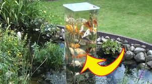 Image result for fish tank