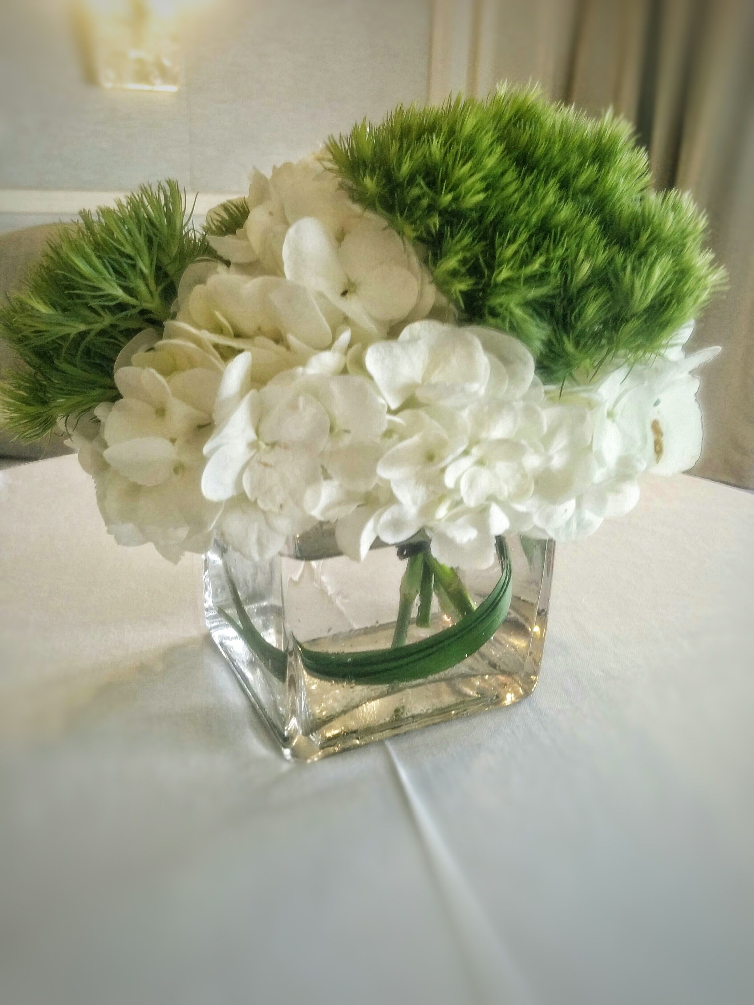 Square Glass Vase With White Hydrangeas And Green Trick Floral Table Centerpieces