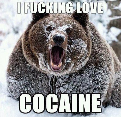 I fucking love cocaine