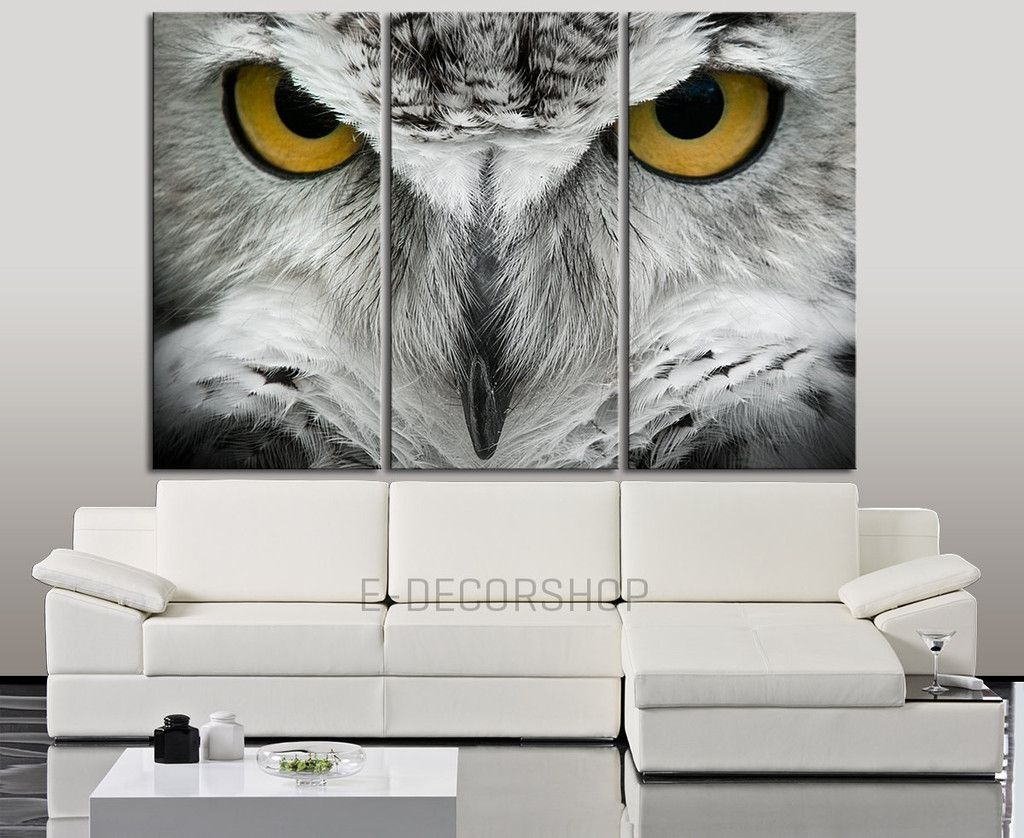 Owl Eye Wall Art Canvas Print Large Canvas Wall Art Owl Canvas Canvas Art Prints