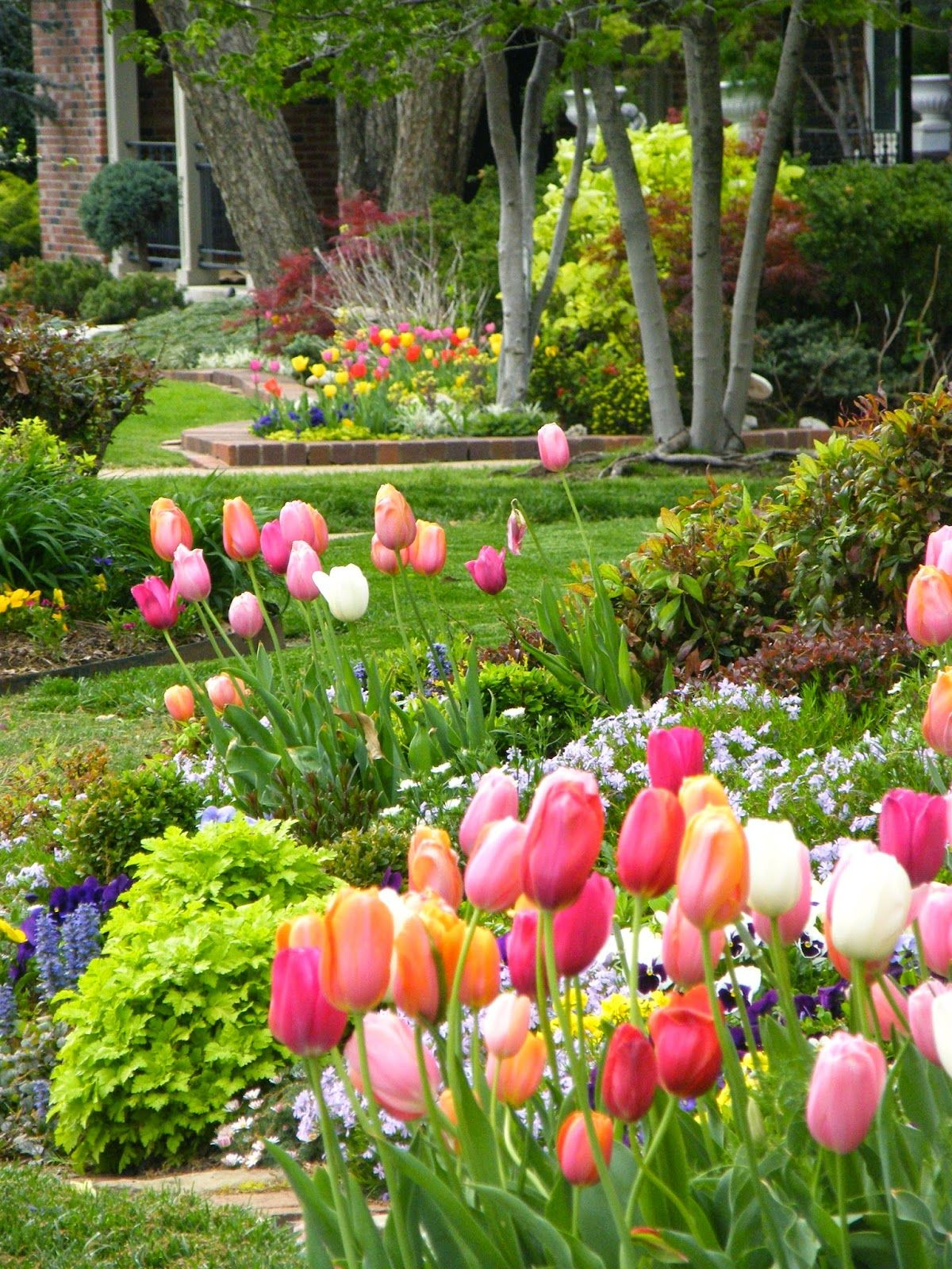 Tulip Time 2015 Beautiful Gardens Gorgeous Gardens Beautiful Flowers