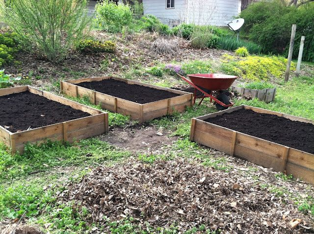 Cedar Raised Beds I M Finally Posting About Those Uber Cheap Ones I Made Vegetable Garden Raised Beds Cedar Raised Garden Beds Raised Garden