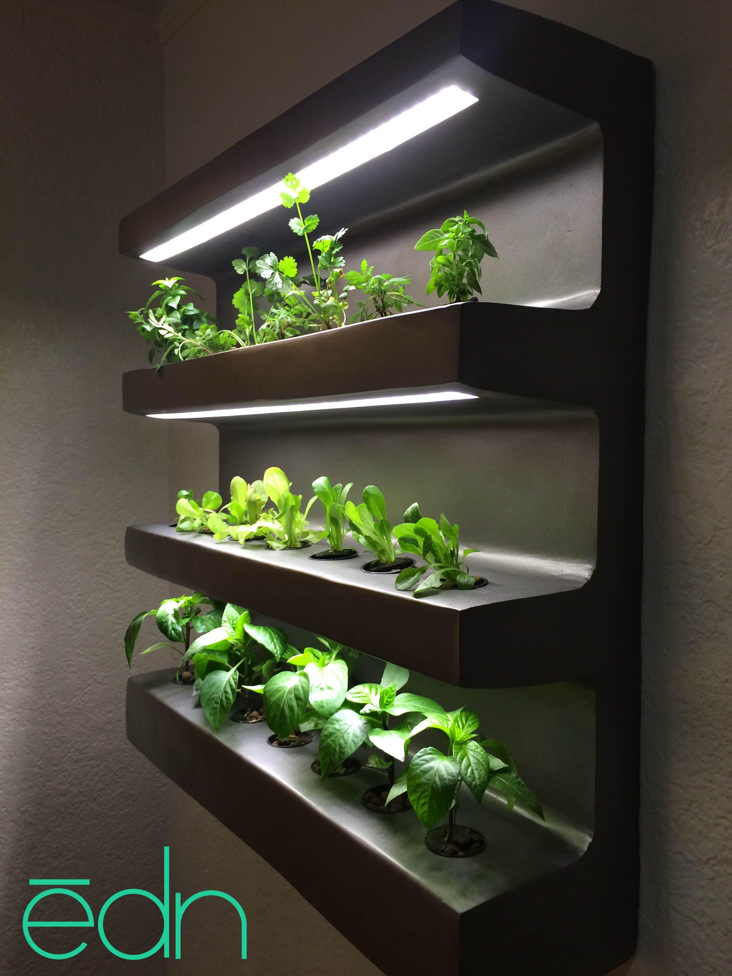 ēdn SignUp Indoor vegetable gardening, Herb grower