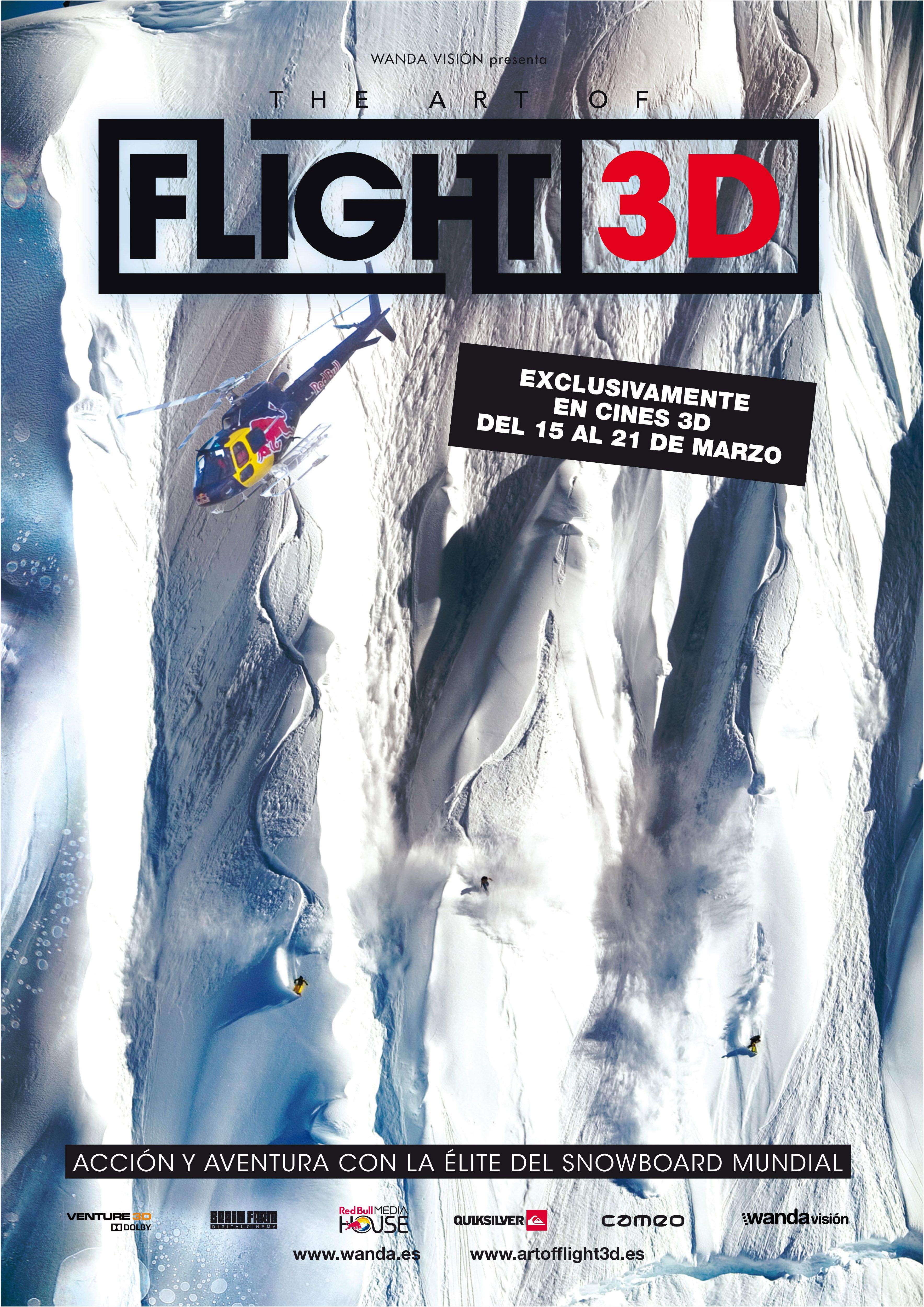 2011 /  The Art of flight 3D