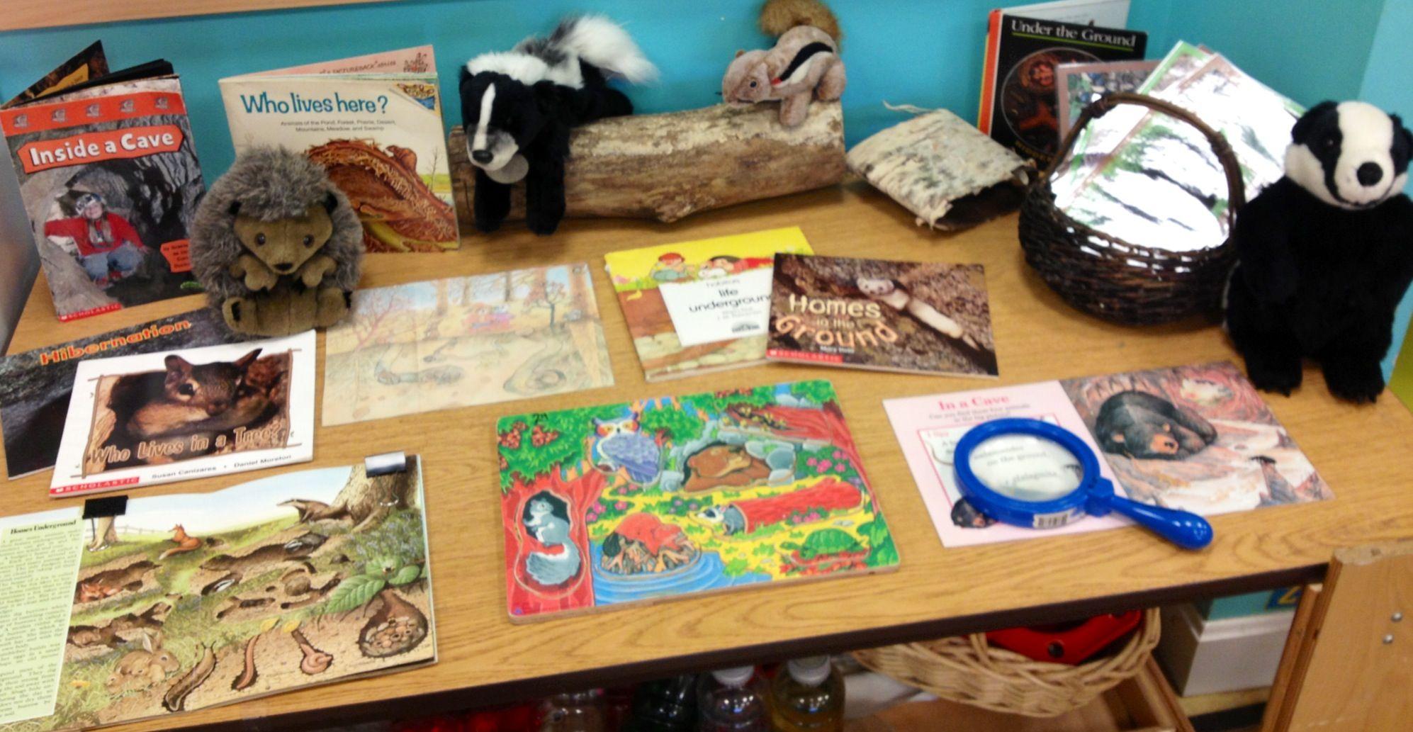 Hibernation Science Table