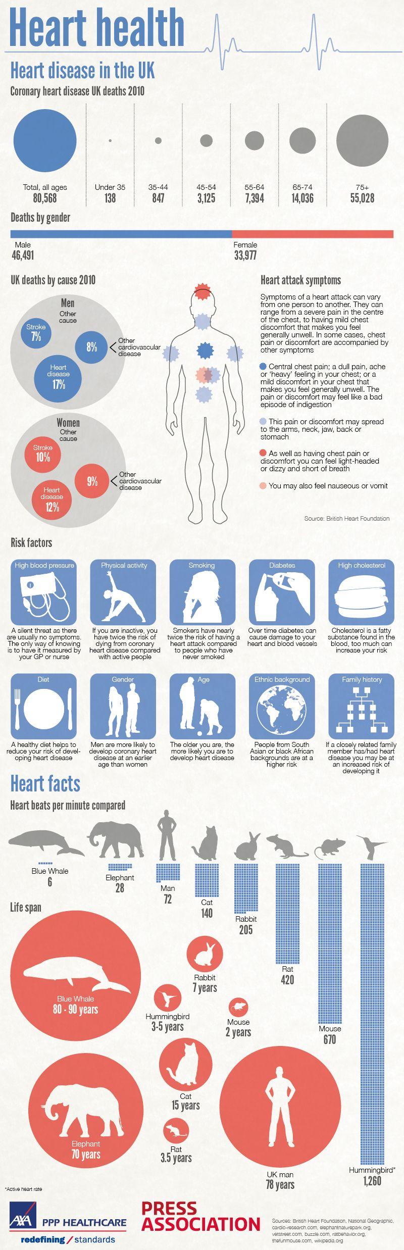 Heart Health Visual Ly Heart Health Infographic Health Health Blog