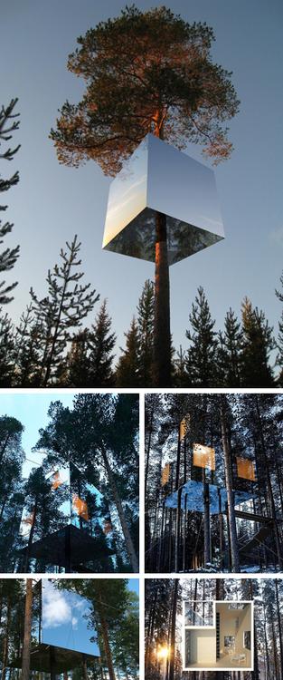 Tham and Videgard - Tree Hotel, 2012